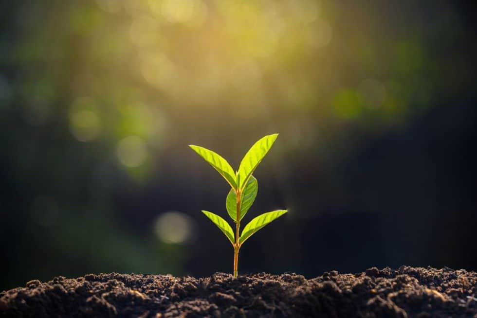 Papildomas finansavimas verslo augimui