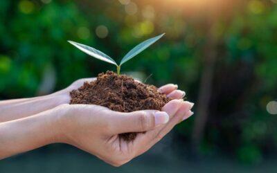 Alternatyvus finansavimas Jūsų verslo plėtrai