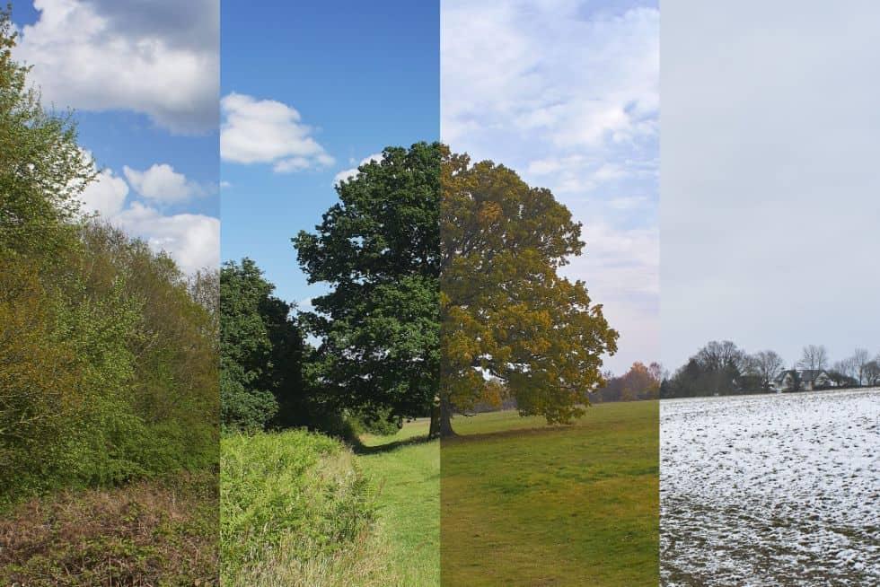 Verslo sezoniškumas